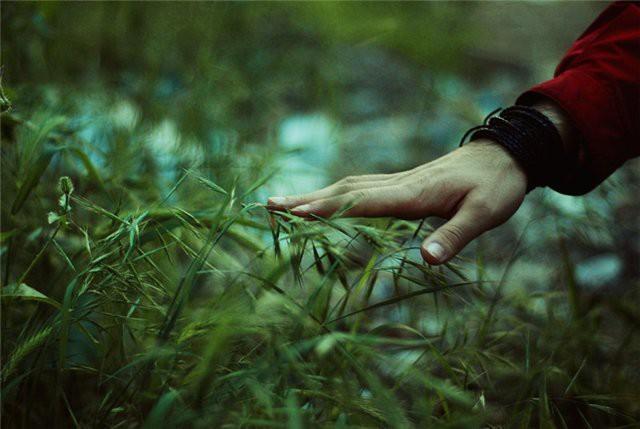 Природные явления... настроения нет...